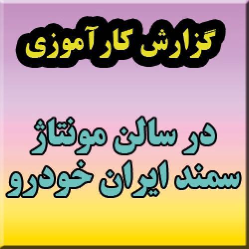 گزارش کارآموزی: بررسی وضعیت ارگونومی فرایند تولید خودرو سمند در سالن مونتاژ ایران خودرو