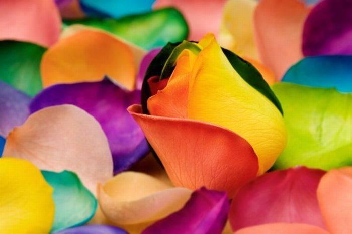 دانلود تحقیق رنگ درمانی