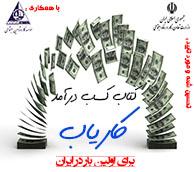 کتاب کسب درآمد کاریاب