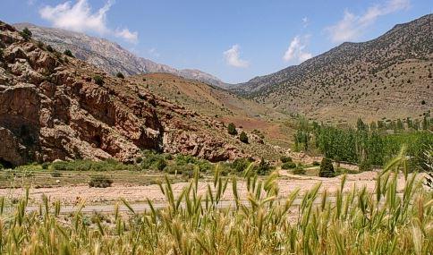مقاله پارک های ملی و مناطق حفاظت شده