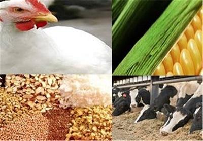 """پاورپوینت """"استاندارد روش اندازه گيري اوره و ازت آمونياكي در خوراك دام و طيور"""" در 52 اسلاید"""