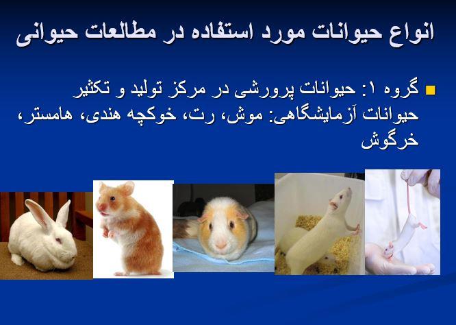"""پاورپوینت """"ملاحظات ایمنی در کار با حیوانات آزمایشگاهی"""" در 33 اسلاید"""