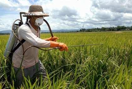"""پاورپوینت """"تأثير باقيمانده سموم دفع آفات نباتي وكودهاي شيميايي ، آنتي بيوتيكها و فلزات سنگين در ايمني مواد غذايي"""""""