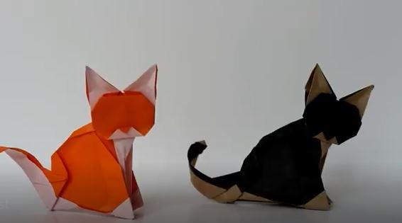 خرید فیلم آموزش کاردستی اوریگامی گربه