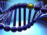 دانلود پایان نامه کامل در مورد الگوریتم ژنتیک (فرمت فایل Wordوورد)تعداد صفحات 65