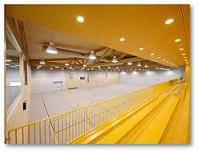 دانلود پروژه محوطه سازی مکان های ورزشی