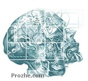 دانلود مقاله پیرامون اتوماتای یادگیر- هوش مصنوعی