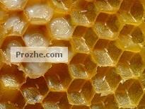 دانلود مقاله پیرامون الگوریتم کلونی زنبور عسل