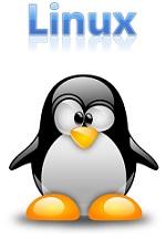 دانلود مقاله پیرامون سیستم عامل لینوکس