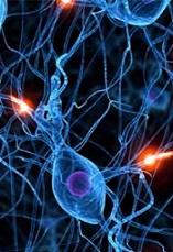 دانلود مقاله سیستم های مبتنی بر شبکه عصبی