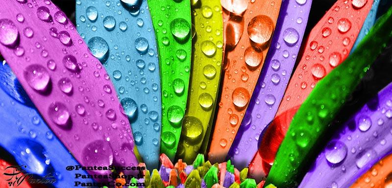 روانشناسی رنگها از دکتر میر محمد مجد