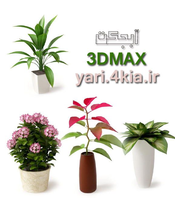 آبجکت 3DMAX  گل و گیاه     1