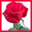 فروشگاه سازهاواستایلهای ارگ 2018و ونرم افزارهای ساخته شده آندروید
