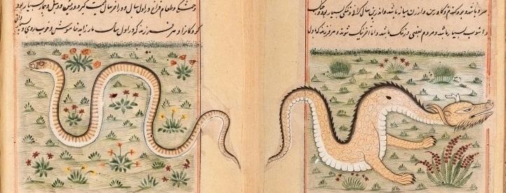 دانلود نسخه بسیار نایاب کتاب فارسی فرخ نامه درباره خواص جانوران و...